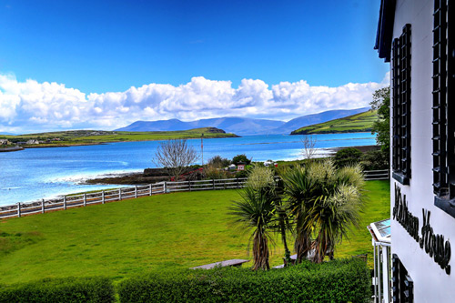 fungie-the-dolphin-room-detail-milltown_house_dingle_kerry_ireland