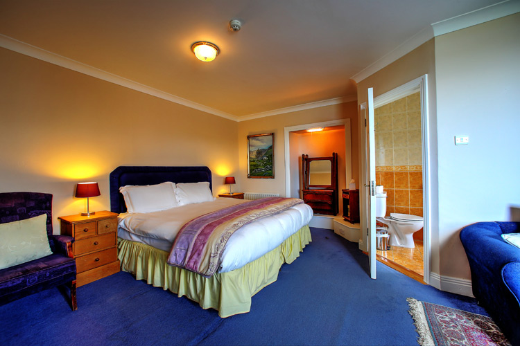 fungie-the-dolphin-room-view-milltown_house_dingle_kerry_ireland